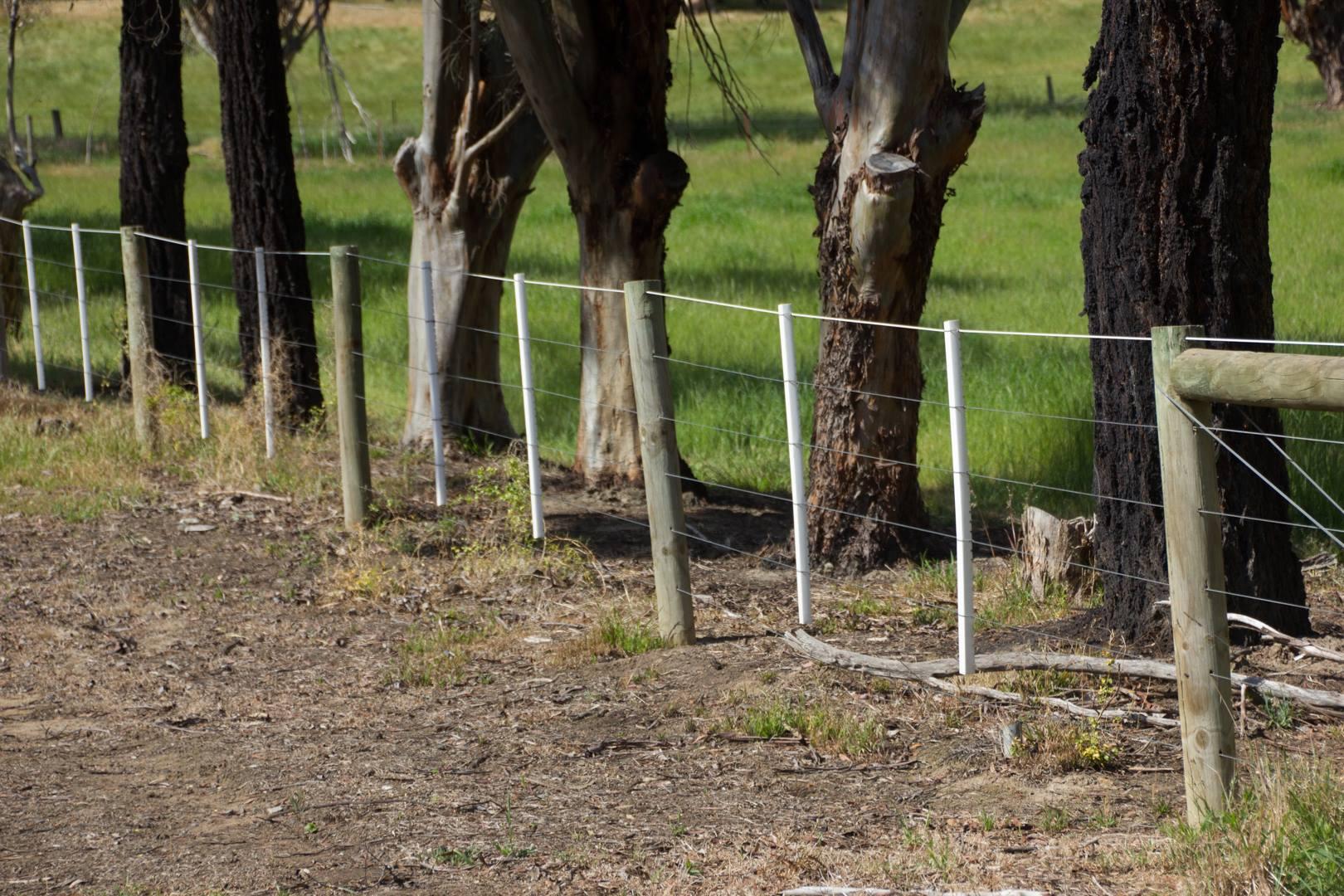 Wildlife-Friendly Fencing